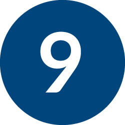 Number Nine Icon